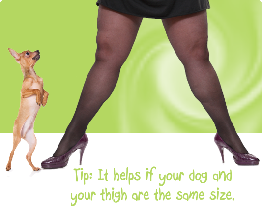 This works best when your dog and your leg are the same size!